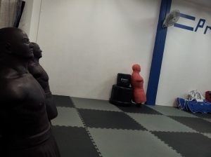 Main Training Area 9