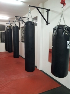 Punching Bag Area 7
