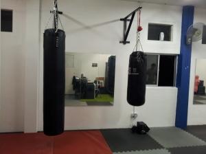 Punching Bag Area 2