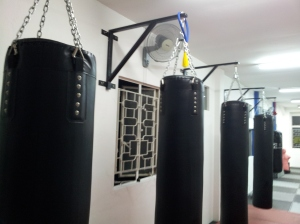Punching Bag Area 4